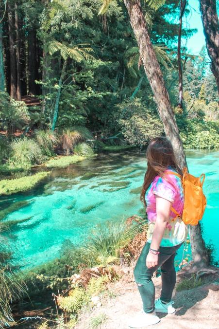 Things to do in Rotorua. Hamurana Springs