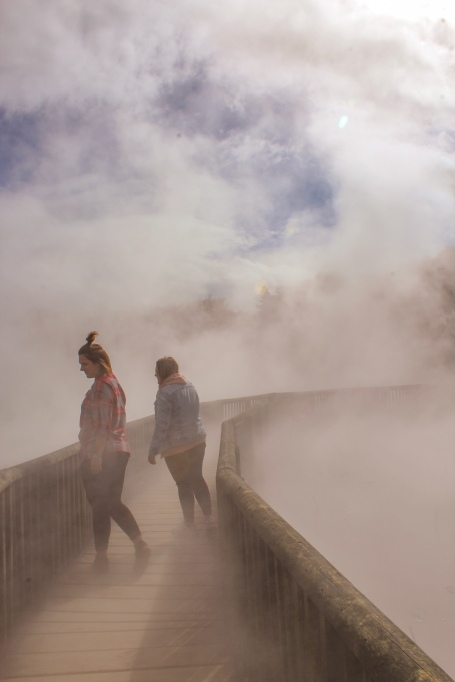 Things to do in Rotorua. Kuirau Park Rotorua